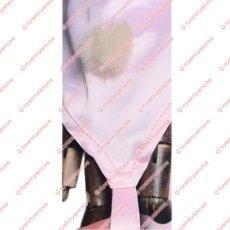画像6: 高品質 実物撮影 ジョジョの奇妙な冒険 Part7 スティール ボール ラン ルーシー スティール SBR  風    コスプレ衣装 コスチューム オーダーメイド (6)